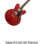 Electric Guitar Musical Instruments Sales Bega-img6