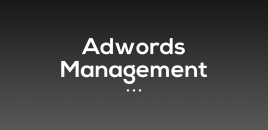 Adwords Management Sydney