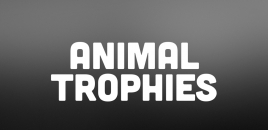 Animal Trophies Minto