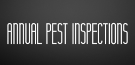 Annual Pest Inspections Kirwan
