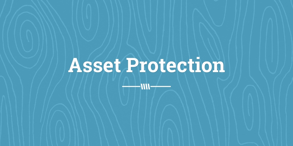 Asset Protection merlynston