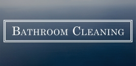 Bathroom Cleaning greystanes