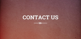 Contact Us | Punchbowl Punchbowl