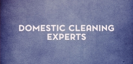 Domestic Cleaning Experts Horningsea Park