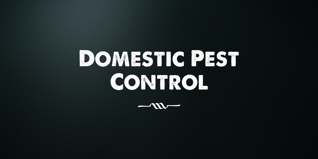 Domestic Pest Control St Clair