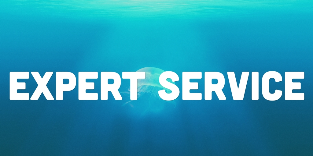Expert Service Indented Head