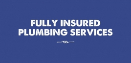 Fully Insured Plumbing Services Paradise