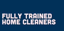 Fully Trained Home Cleaners Hectorville