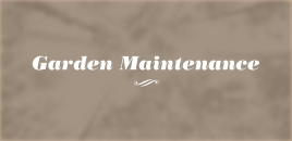Garden Maintenance Rochedale South