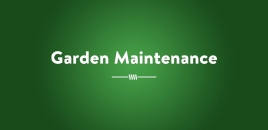Garden Maintenance south morang