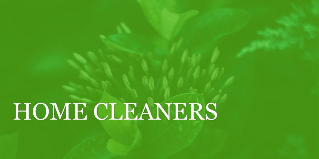 Home Cleaners in Blacktown Blacktown