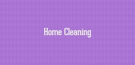 Home Cleaning in Homebush West Homebush West