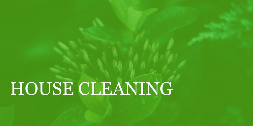 House Cleaning Blacktown