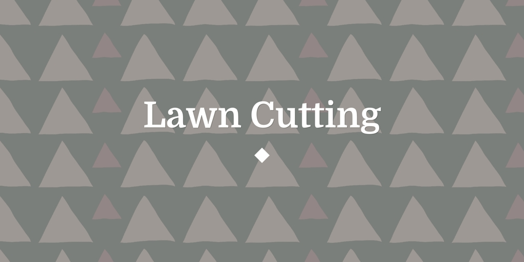 Lawn Cutting Meadow Springs