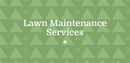 Lawn Maintenance Services Hoxton Park
