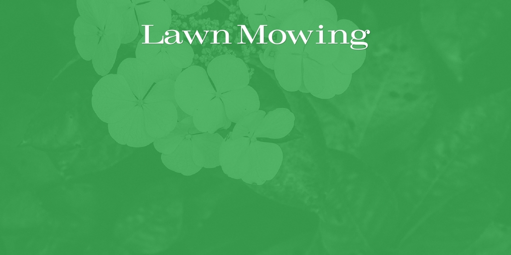 Lawn Mowing Ashbourne