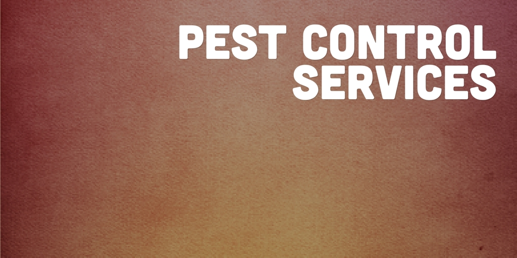 Pest Control Services Port Lincoln