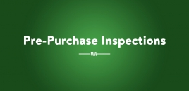 Pre - Purchase Inspections | Ayr Pest Control Services Ayr