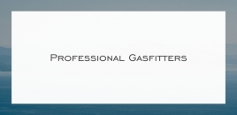 Professional Gasfitters Wilson Wilson