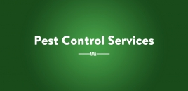 Pset Control Services Adelaide