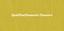 Qualified Domestic Cleaners Greystanes greystanes