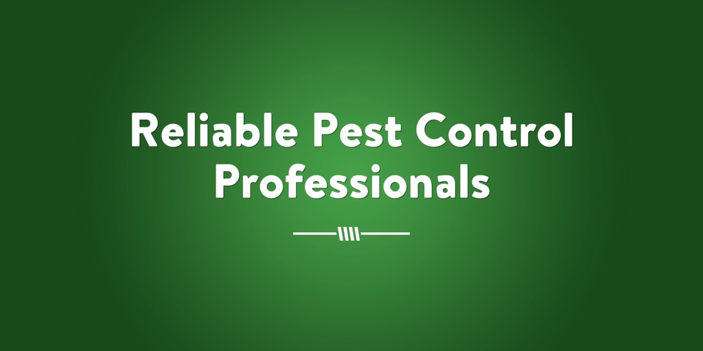 Reliable Pest Control Professionals Blue Haven