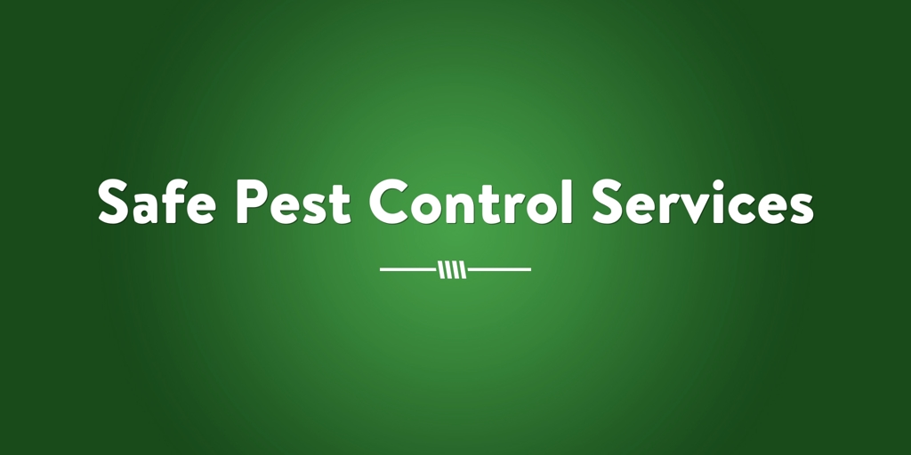 Safe Pest Control Services Blue Haven