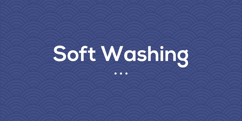 Soft Washing Rooty Hill