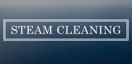 Steam Cleaning black mountain