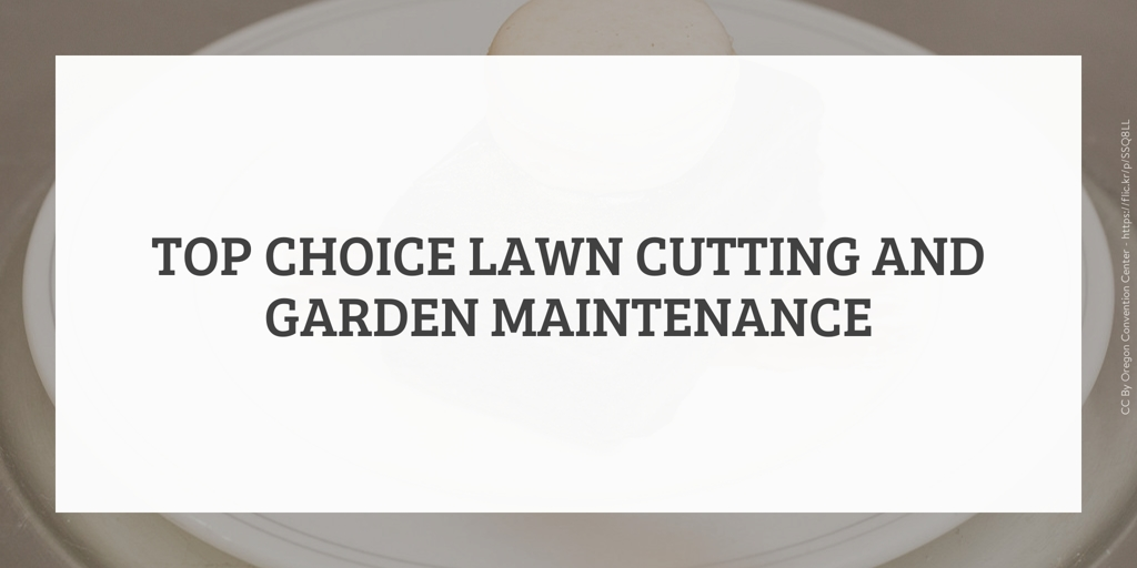 Top Choice Lawn Cutting and Garden Maintenance Middleton Grange
