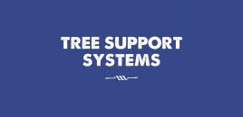 Tree Support System North Manly