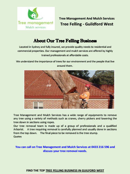 About Our Tree Felling Business Guildford West