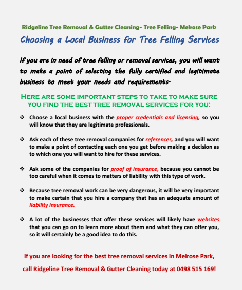 Choosing a Local Tree Removal Service Cumberland park