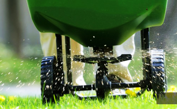 How to Keep Your Lawns Healthier Hoxton Park