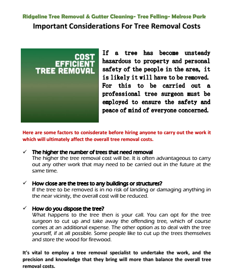 Important Considerations For Tree Removal Costs Cumberland park