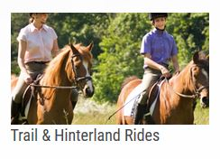 Services - Horse Riding Schools Bangalow