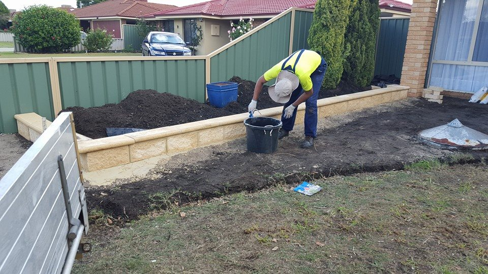 Services - Lawn Cutting and Garden Maintenance Southern River