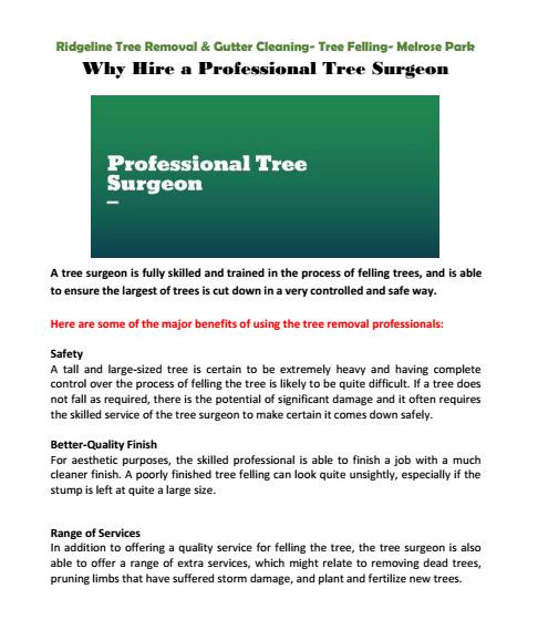 Why Hire a Professional Tree Surgeon Cumberland park